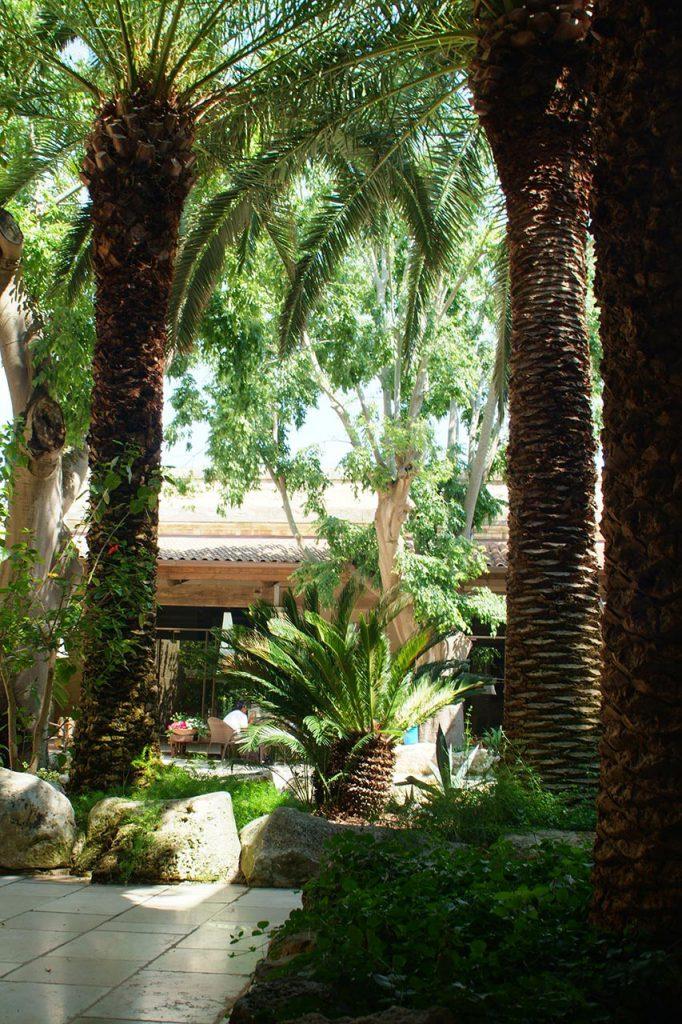 Esterni di giorno - Hotel Torre Del Parco